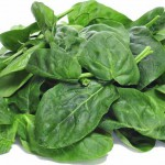 Spinat als pflanzliche Proteinquelle