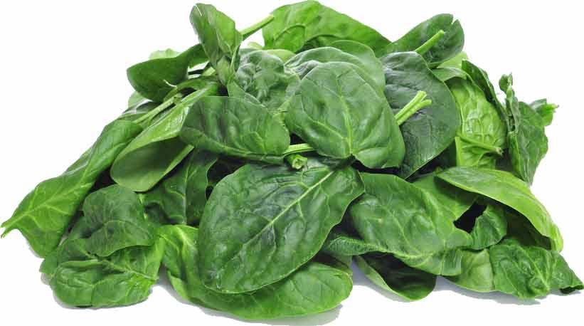 Vegane Protein-Quellen in Lebensmitteln