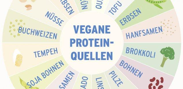 Vegane Eiweißquellen Infografik