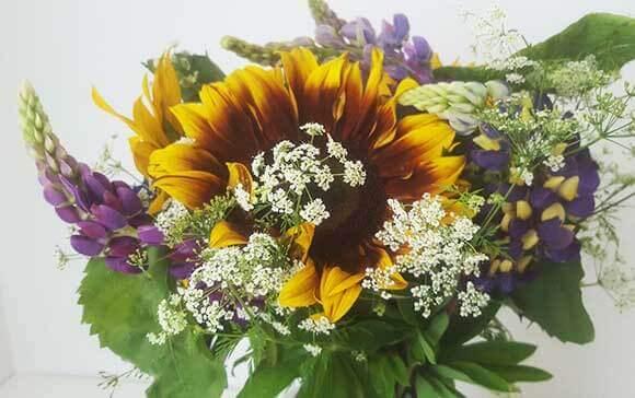 Lupinen in einem Blumenstrauß